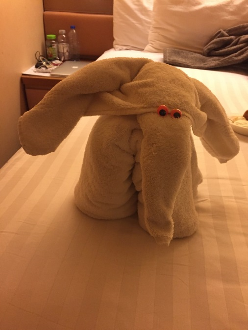 Gotta love those towel animals!