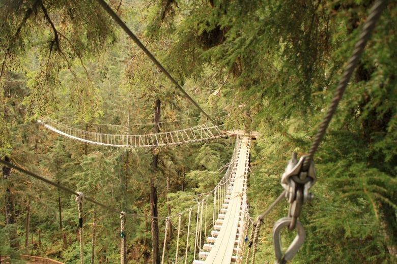 One of the suspension bridges.